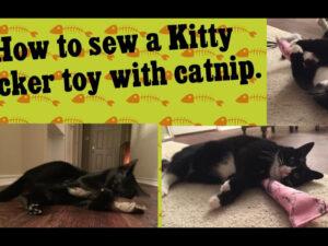 How to Sew – Kitty Kicker Toy